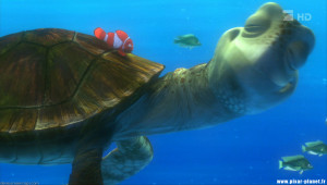 Crush Finding Nemo Quotes from finding nemo.