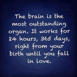 Source Unknown: The brain is the most outstanding organ ... until ...