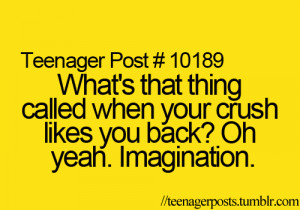 Whats it called when your crush likes you back ? Oh yeah imagination