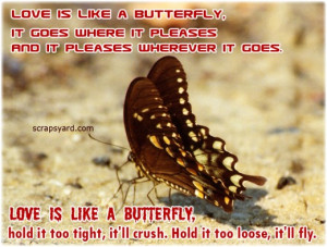 Butterfly Quotes About Love