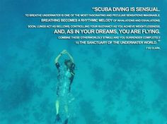 This quote is seriously so true. I could scuba dive in a pool and be ...