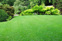 lawn mowing cookstown receive free quotes from cookstown lawn mowing ...