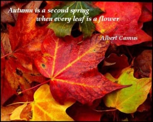 Autumn Is A Second Spring When Every Leaf Is A Flower…