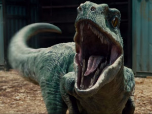 the-velociraptors-in-the-jurassic-park-movies-are-nothing-like-their ...