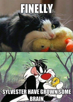Sylvester and Tweety Real Life