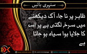 ... -quotes-%5D-zaahir-par-naa-jaa-aag-dekhne-urdu_quotes_sayings_37.jpg