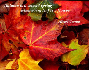 Autumn is a second spring when every leaf is a flower. (Albert Camus)