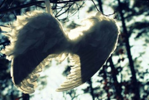 You're Not An Angel Cause Your My Wings