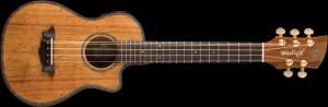 Osccar Scmidt Willie K model 5 string Uke. Love it. I have a few ...