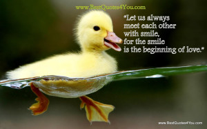 """... With Smile For The Smile Is The Beginning of Love"""" ~ Life Quote"""