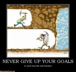 Perseverance and Goals - You Can't Have One Without The Other