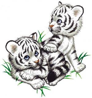 WHITE TIGER-ENDANGERED BABIES