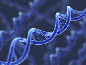 DNA Tagging Gun