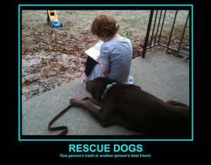 have 4 rescued dogs they are the best dogs to have. (Cats too, I ...