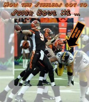 Stupid Steelers Image