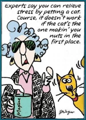 funny maxine comics (21)