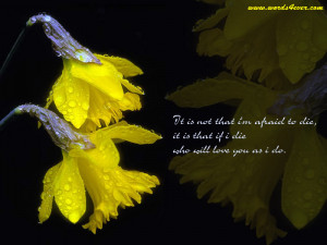 beautiful quotes 06 beautiful quotes 07 beautiful quotes 08 beautiful