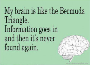 Funny Quotes-Thoughts-Bermuda Triangle-Brain-Information-Best-Nice