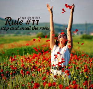 happiness quote: stop and smell the roses.