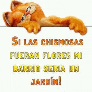 Funny mexican quote. | Quotes