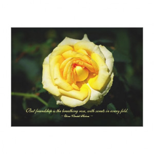 Friendship Quote Yellow English Rose Stretched Canvas Print