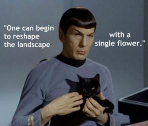 mr spock brilliatn quotes 58013 hi resolution mr spock brilliatn ...