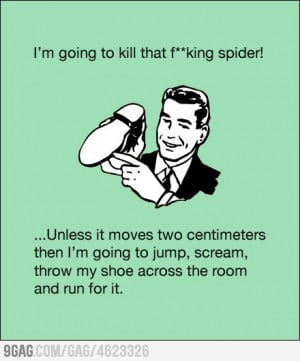 Funny Quotes About Killing Spiders http://everythingfunny.org/funny ...