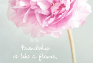 friendship-is-like-a-flower-quotes-sayings-pictures
