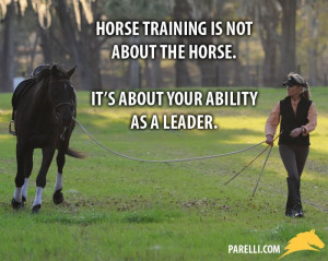 Horse training is not about fixing the horse. It's about fixing your ...