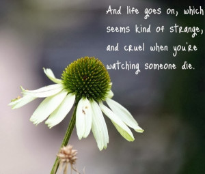 ... loved one sorry quotes loved one quotes for a sick loved one quotes