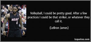 Volleyball, I could be pretty good. After a few practices I could be ...