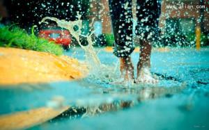 夏天的雨图片