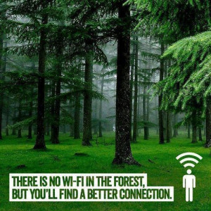 Connect with nature.