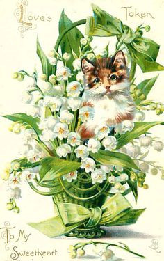 vintage postcard with Lily of the Valley ~ 1908 More