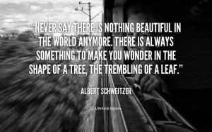 Albert-Schweitzer-never-say-there-is-nothing-beautiful-in-42997.png ...