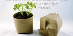 Environmental Friendly Product