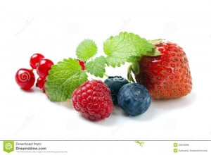 Berry Fruit Royalty Free Stock Images Image