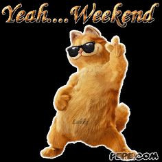 Week end quotes | funny weekend quotes. So spend your weekend doing ...