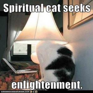 Enlightenment Is A Destructive Process