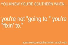 Southern Hospitality Quotes | ... Charleston-set ON THE VERGE OF I DO ...