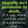 stupidity on deviantart laurell k hamilton # quotes # books ...
