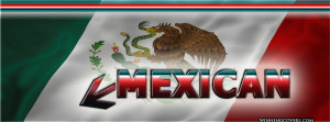 mexican flag arrow pointing to profile picture : spanish language ...