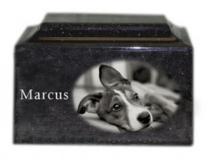 engraved pet urns for ashes