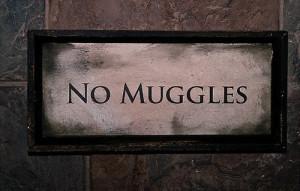 harry potter, hogwarts, muggles