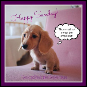 Happy Sunday Quotes Happy sunday
