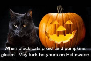 and sayings happy halloween 2014 quotes and sayings happy halloween ...