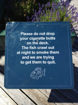 smoking quotes trying to quit smoking funny image quotes lists jokes ...