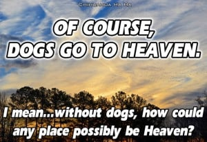 Dogs Heaven Quote Doggy...