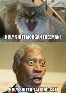 holy shit it s morgan freeman holy shit it s morgan freeman