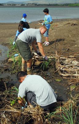Images for sediment